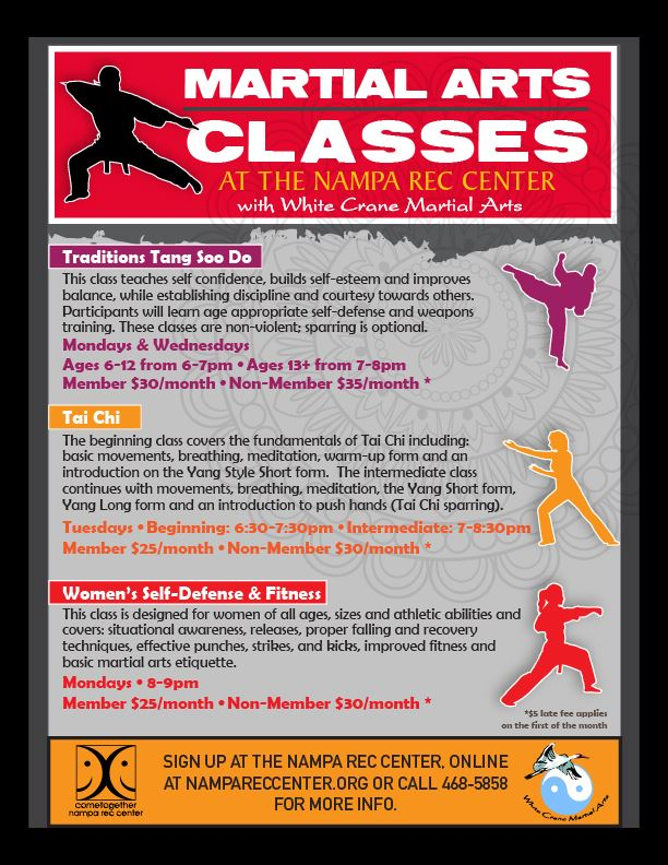 Martial Arts Classes 2017_eflyer