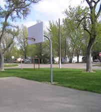 Basketball Hoop on a Concrete Court