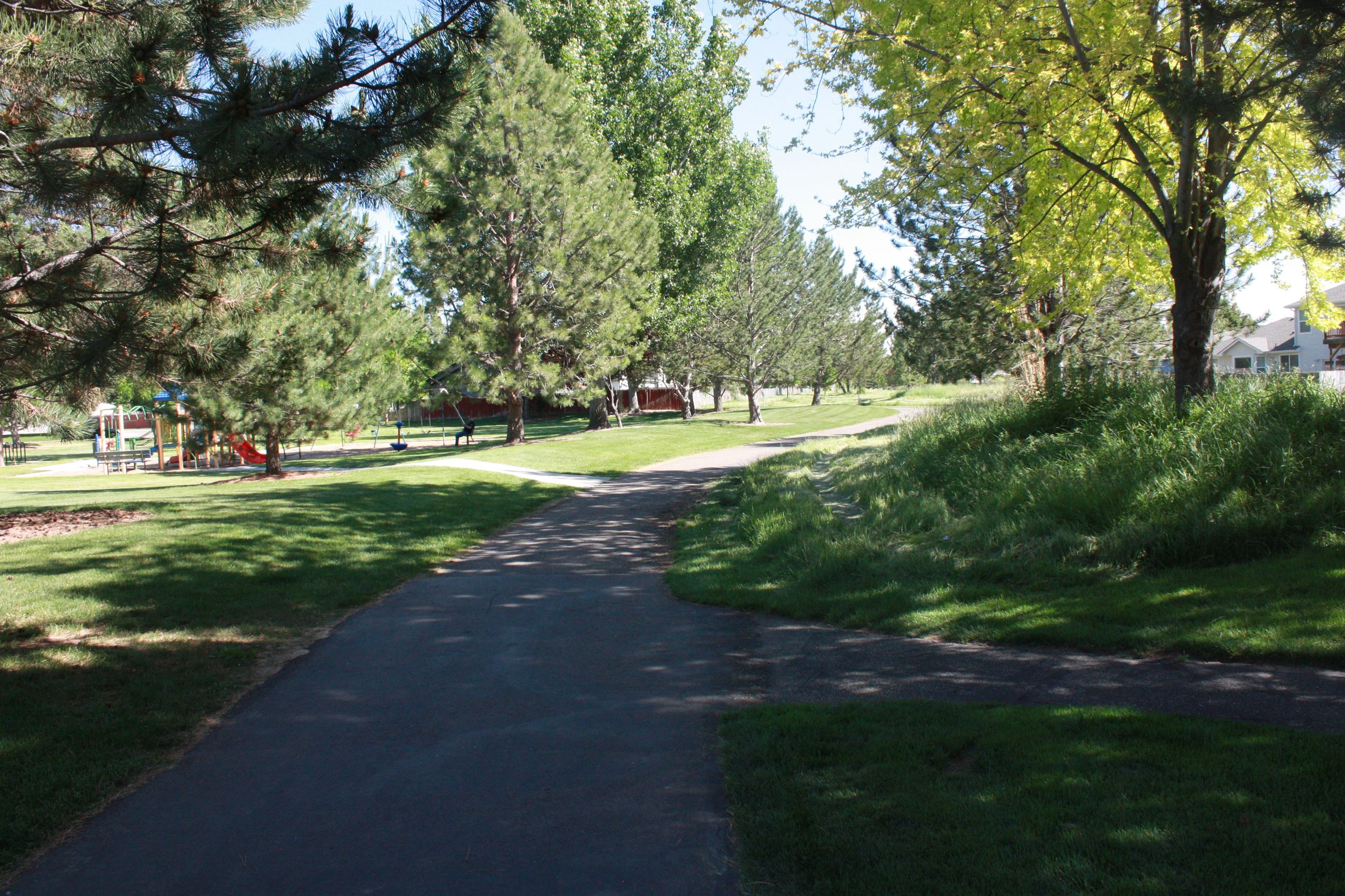 Paved pathway with grass and large trees on the side