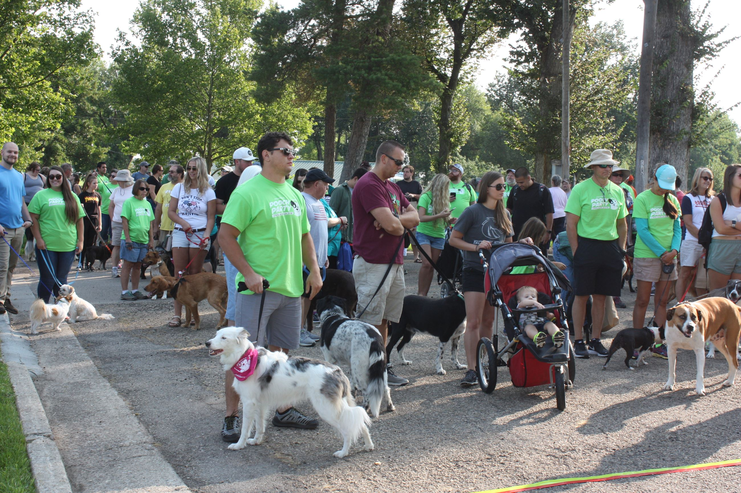 Group of people with their dogs at the beginning of the walk at the Pooch Party